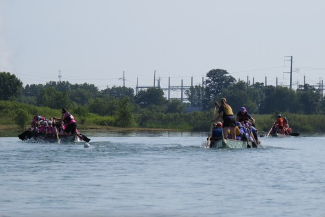 Three teams racing for the finish. Each boat must have a minimum of 8 women and max of 12 at all times.
