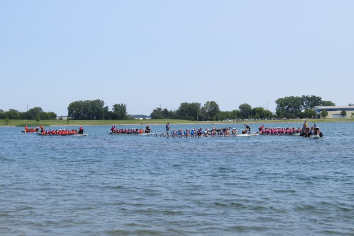 Teams paddling back to shore after the 1000 meter race. Time for the awards ceremony and good banter among everyone.